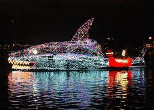 Flotilla Whale